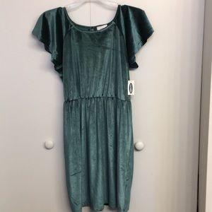 NWT Old Navy Green Velvet Flutter Sleeve Dress L